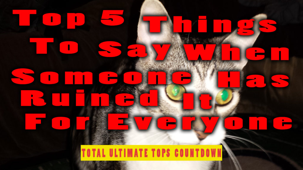 Top 5 Things To Say When Someone Has Ruined It For Everyone